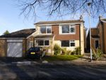Thumbnail to rent in Park Drive, Morpeth