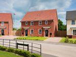 "Thumbnail to rent in ""Folkestone"" at Lightfoot Lane, Fulwood, Preston"