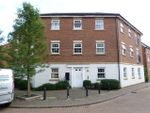 Thumbnail to rent in Whernside Drive, Stevenage