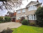 Thumbnail for sale in Galleywood Road, Chelmsford, Essex