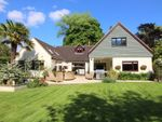 Thumbnail for sale in Stapley Lane, Ropley, Alresford