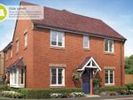 Thumbnail to rent in Tollesbury Avenue, Barleythorpe, Oakham
