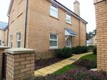 Thumbnail to rent in North Road, St. Ives, Huntingdon