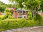 Thumbnail for sale in Brynford Hill, Holywell, Flintshire