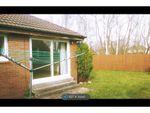 Thumbnail to rent in Arnott Quadrant, Motherwell