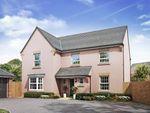 Thumbnail for sale in David Wilson Homes, Park Farm, Butt Lane, Thornbury