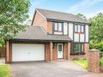 Thumbnail to rent in Monkridge, Abbey Farm, North Walbottle, Newcastle Upon Tyne