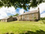 Thumbnail for sale in East Stonefolds, Simonburn, Hexham, Northumberland