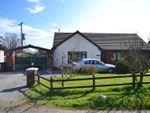 Thumbnail for sale in Ffynnongain Lane, Pwlltrap, St. Clears, Carmarthen