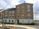 Thumbnail to rent in Flaxdown Gardens, Coton Meadows, Rugby