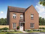 "Thumbnail to rent in ""Radleigh"" at White Post Road, Bodicote, Banbury"