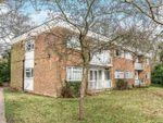 Thumbnail to rent in Bassett Wood Drive, Southampton