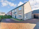 Thumbnail to rent in Millport Drive, Eye, Peterborough