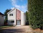 Thumbnail to rent in 23 Carseview Gardens, Dundee