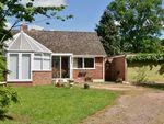 Thumbnail to rent in Bromsberrow Heath, Ledbury