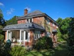Thumbnail for sale in Moorhill, Burley, Ringwood