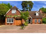 Thumbnail for sale in Sandy Close, Crawley Down