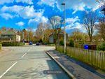 Thumbnail to rent in Lothian Street, Bathgate