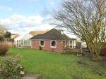 Thumbnail for sale in Grove Lane, Stalbridge, Sturminster Newton, Dorset