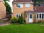 Thumbnail to rent in Osborne Road, Loughborough