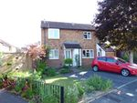 Thumbnail for sale in Bearwood, Bournemouth, Dorset