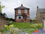 Thumbnail to rent in Lavengro, Kingsgate, Hexham