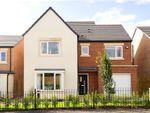 Thumbnail to rent in Stephenson Park, Killingworth