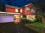 Thumbnail for sale in Armand Close, Watford