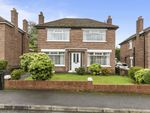 Thumbnail to rent in Richhill Crescent, Belfast