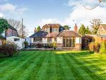 Thumbnail for sale in Winsor Road, Winsor, Southampton