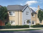 "Thumbnail to rent in ""Kensington"" at Welton Lane, Daventry"