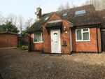 Thumbnail to rent in Lychpit, Basingstoke, Hampshire