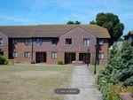 Thumbnail to rent in Loudon Court, Ashford
