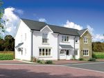 "Thumbnail to rent in ""Argyll Mid"" at Montrose Road, Arbroath"