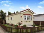 Thumbnail for sale in Blue Sky Close, Bradwell, Great Yarmouth