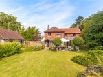 Thumbnail for sale in Heath End, Petworth, West Sussex