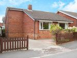 Thumbnail to rent in Borrowdale Avenue, Halfway, Sheffield, South Yorkshire