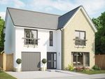 Thumbnail to rent in Plot 90, The Juniper, Fair Acres At Bowmont Terrace, Dunbar