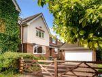 Thumbnail for sale in Wilson Close, Ashford, Kent