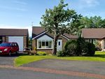 Thumbnail for sale in Ash Close, Hexham