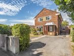 Thumbnail for sale in Southleigh Road, Warblington, Havant