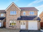 Thumbnail to rent in Trewoon, St. Austell, Cornwall