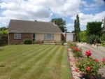 Thumbnail for sale in Priory Farm Road, Hatfield Peverel, Chelmsford