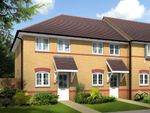 "Thumbnail to rent in ""Ashford"" at Arnold Drive, Corby"