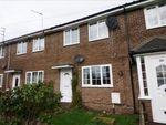 Thumbnail to rent in Kings Park, Scotland Gate, Choppington