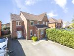 Thumbnail for sale in Carnation Close, Rush Green, Essex