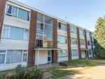 Thumbnail to rent in Studley Drive, Ilford