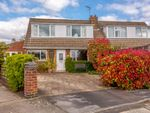 Thumbnail to rent in Larchfield, York