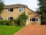 Thumbnail to rent in Belmore Park, Ashford