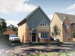 "Thumbnail to rent in ""The Yarkhill"" at Oak Tree Road, Hugglescote, Coalville"